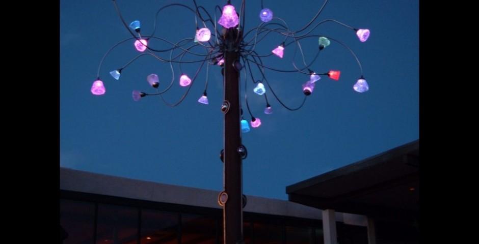 Skyburst at Westward Look Resort, Tucson, AZ 2004