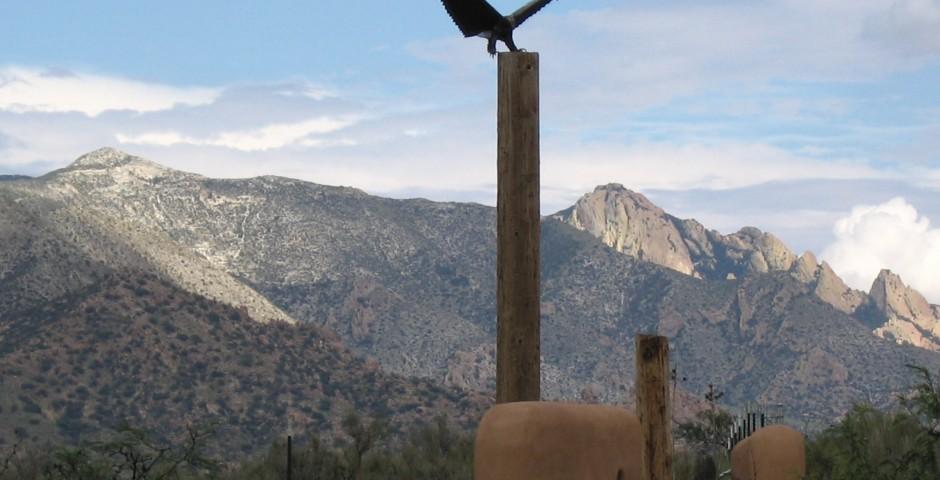 Eagle Landing, Dragoon Mountain Ranch, Saint David, Arizona ^private commission