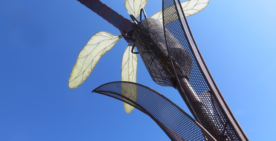 Dragonfly (detail), Greeley, CO